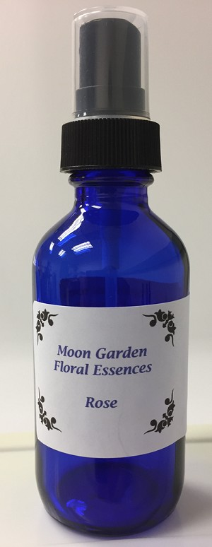 Moon Garden Essence: Red Rose