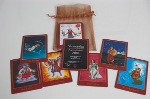 Shamanka: Oracle of the Shamaness Deck ONLY - T.E.MacArthur